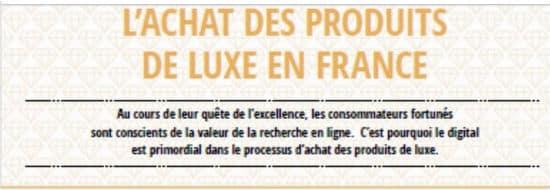 #Infographie du Mercredi : L'achat des produits de luxe en France