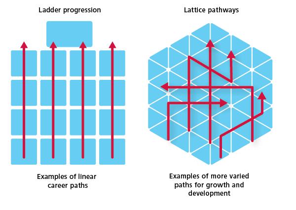 Ladder vs lattice