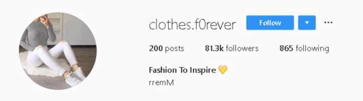followers/publications Instagram