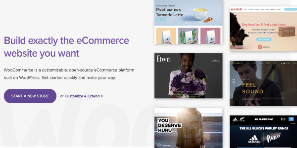 extension WordPress WooCommerce pour dropshipping wordpress