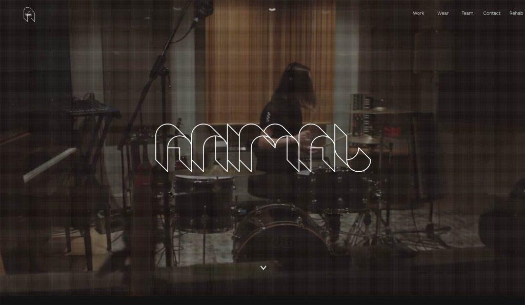 Site design AnimalMusic